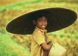Suku Lubu dan Suku Batak