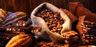 Wakil Presiden Sebut Produktivitas Kakao jadi Prioritas