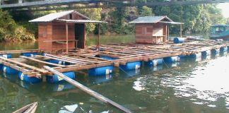 Pemerintah Kurangi Kerambah Jaring Apung di Danau Toba