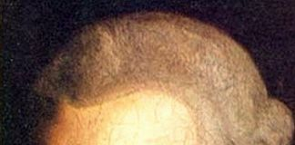 Mengenang Filsuf Immanuel Kant
