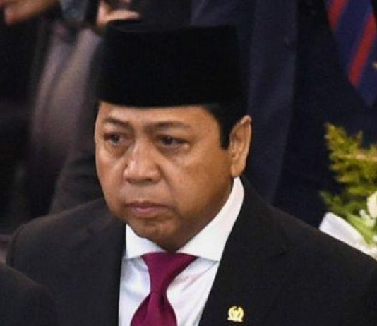 Soal Bakal Calon Wakil Presiden Usulan Aburizal, Ini Kata Novanto