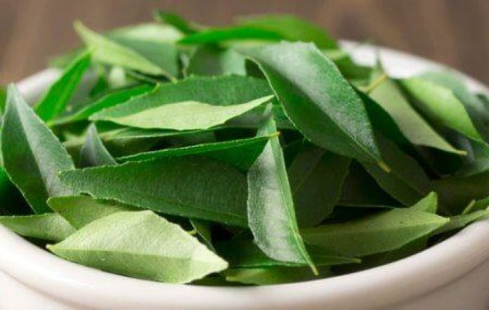 Curry leaves are believed to be a remedy for infertility