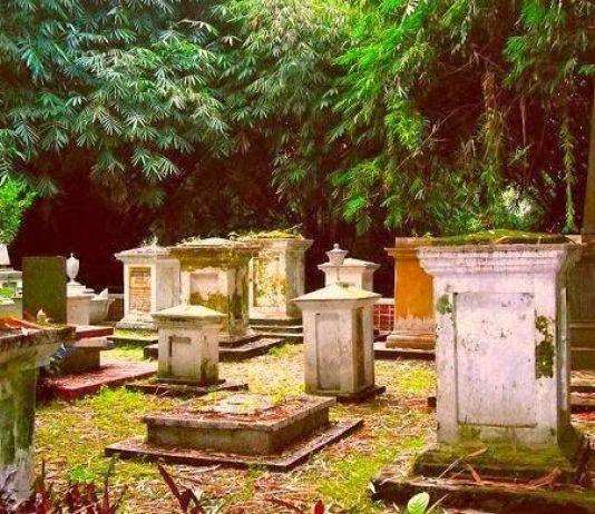 Inilah 4 Tempat Sangat Angker dan Menyeramkan di Kebun Raya Bogor