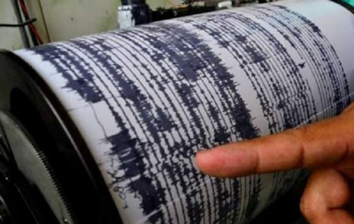 Quake of magnitude 7 strikes near New Caledonia: USGS