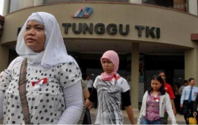 Malaysia, Indonesia to Address EU Resolution on Palm Oil