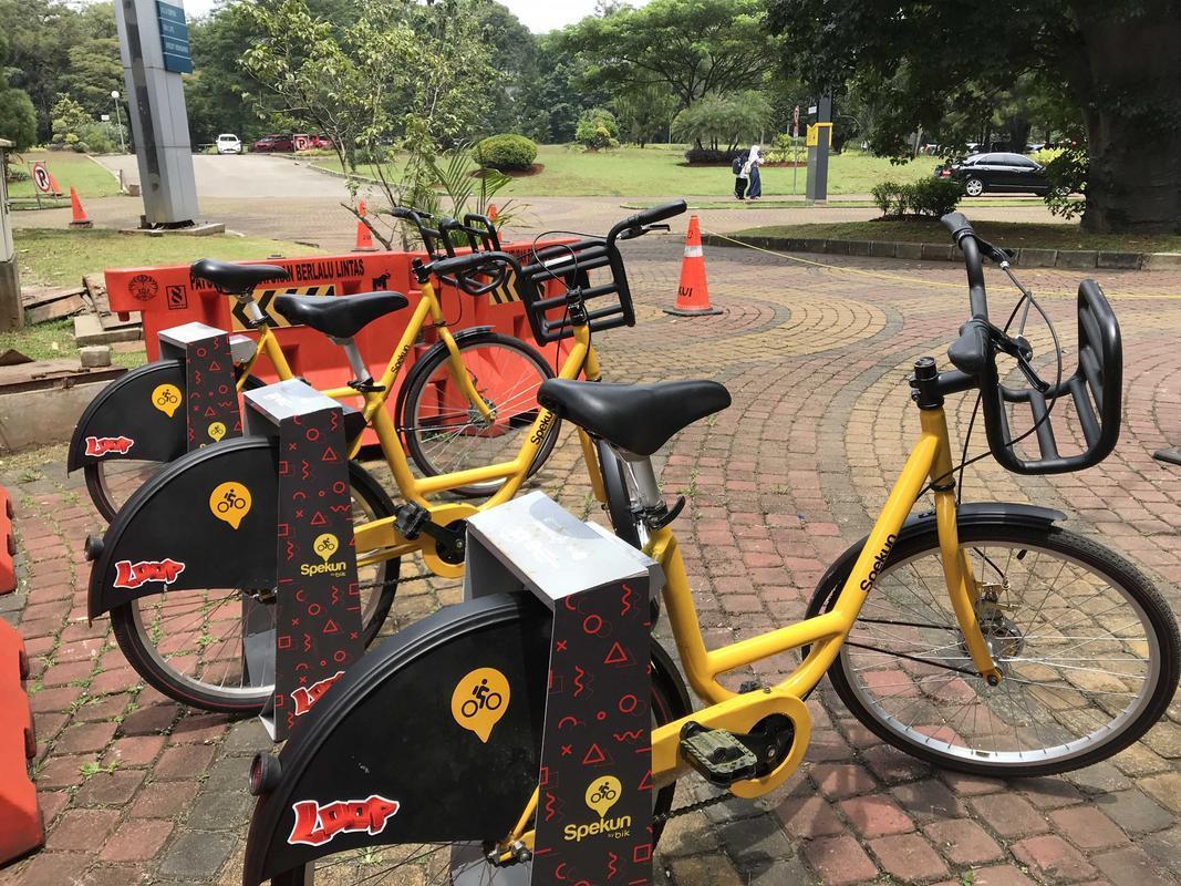Hasil gambar untuk Sepeda kampus UI