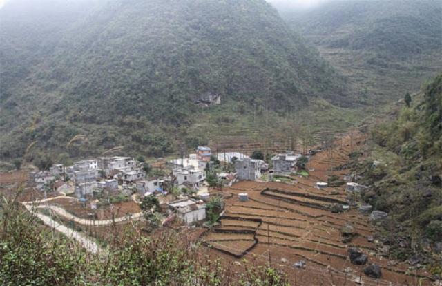 Penduduk desa Nongjing, wilayah otonomi Guangxi Zhuang, Tiongkok, hidup dari beternak kalajengking.