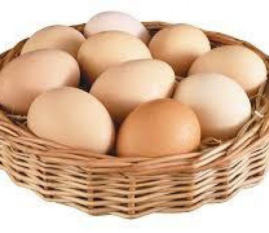 Khasiat Telur untuk Menjaga Bobot Tubuh Ideal, Seperti Apa?