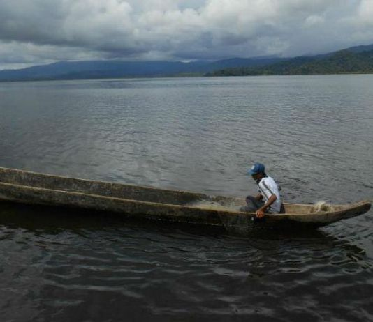 Makna Siluman Belut Berkuping bagi Suku Kaili, Sulawesi Tengah