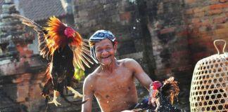 Lelaki Bali Pernah Mengolok Wanita dengan Mencarikan Madu Baru