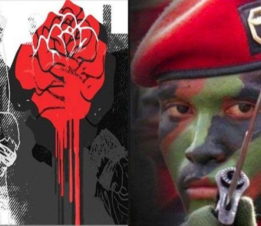 Antara Bunga dan Anyir Darah, Kopassus Laksana 'Mawar Berduri'