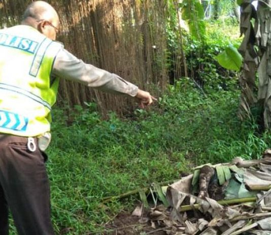 Merinding! Ada Penampakan di Sekitar Lokasi Penemuan Mayat Wanita Hamil