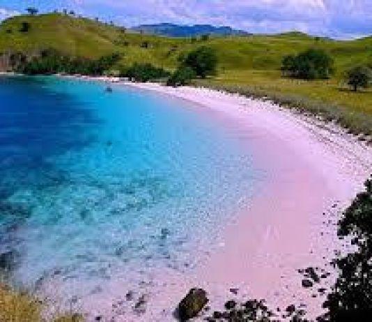 Tantowi Yahya Promosikan Wisata Indonesia di Selanda Baru dengan Cara Ini