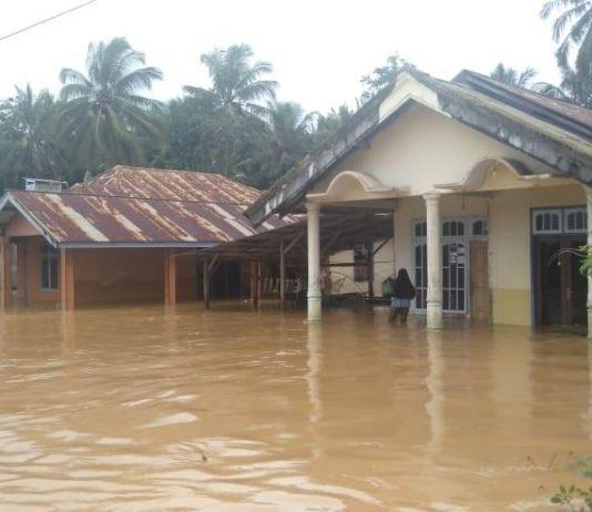 Curah Hujan yang Tinggi Akibatkan Ribuan Warga Terdampak Banjir di Banggai
