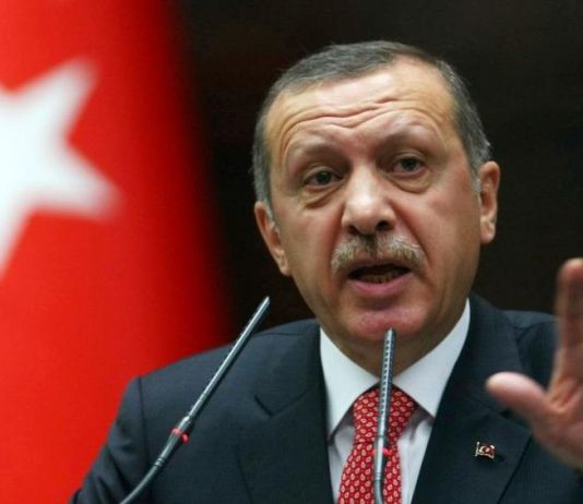 Siap Lindungi Warga Siprus Turki, Ini Pernyataan Tegas Erdogan