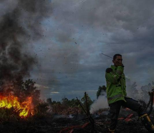 Petugas Masih Berupaya Padamkan Kebakaran Lahan Gambut di Pekanbaru