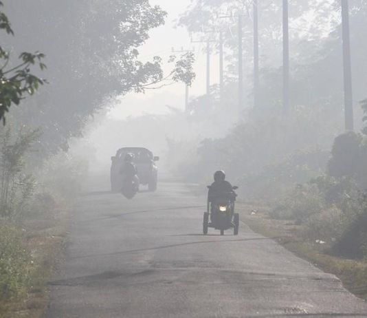 Waspadai Kalteng Sudah Diselimuti Kabut Asap