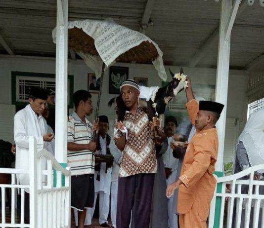 Ritual Mendandani Kambing Berkalung Bunga Kamboja sebelum Temui Ajal