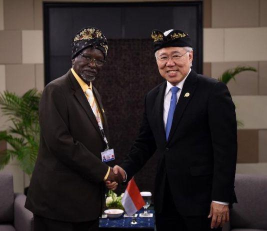 Mendag RI Dorong Kerja Sama Perdagangan dengan Tiga Negara Afrika