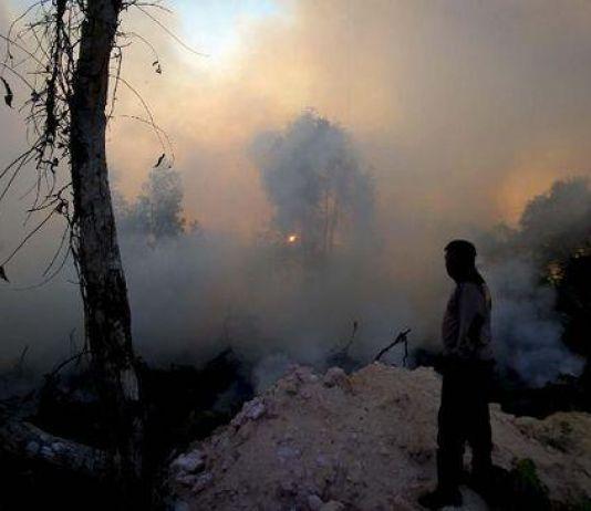 Kendalikan Karhutla di Riau, BNPB Lakukan Operasi Teknologi Modifikasi Cuaca