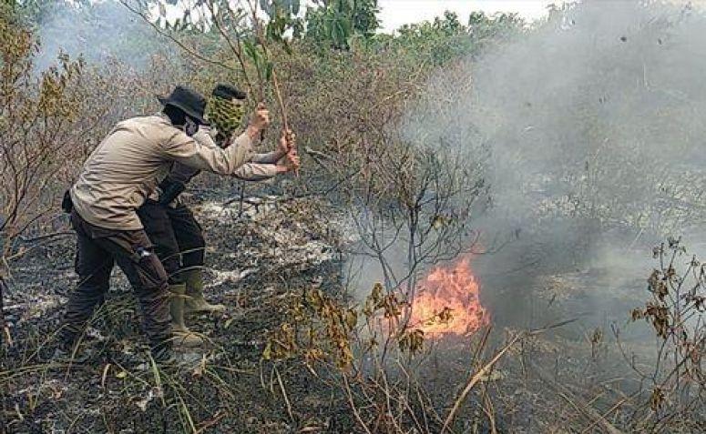 Karhutla Riau, Wiranto: Tanggung Jawab Daerah, Jangan Terus Bergantung pada Pusat