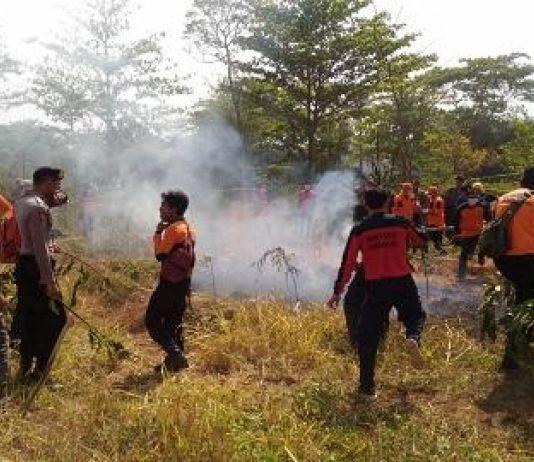 Petugas Kesulitan Padamkan Api di Hutan Banjarnagera